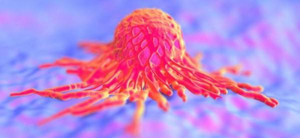 Плоскоклеточная папиллома - что это и как выглядит на фото