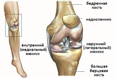 Боли в коленях при сгибании возникают по разным причинам