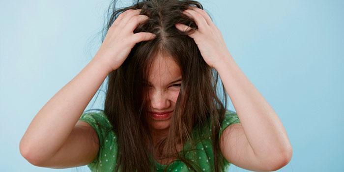 Педикулез - одна из причин зуда головы